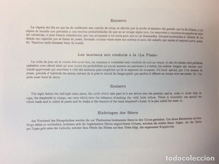 Tauromaquia: AÑO 1998 - A LOS TOROS ÁLBUM CON 28 ACUARELAS TAURINAS DE DANIEL PEREA EDICIÓN FACSÍMIL - Foto 3 - 196781546