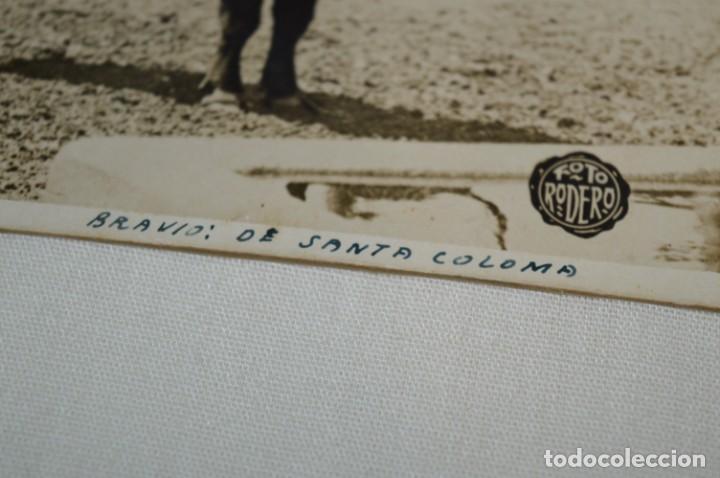 Tauromaquia: Principios/Mediados 1900 / 11 FOTOGRAFÍAS TARJETA POSTAL / Sin datos / Originales y variadas ¡MIRA! - Foto 6 - 199665916