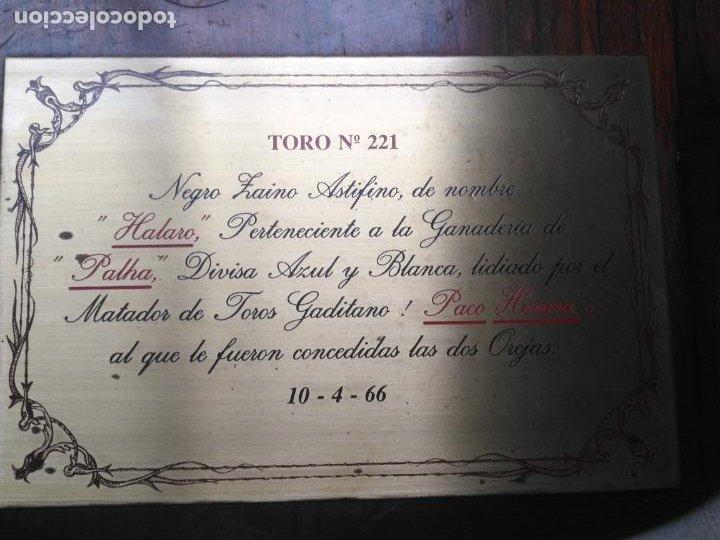 Tauromaquia: GRAN METOPA CAOBA CON PLACA 2OREJAS TORO CADIZ 1966 DIVISA AZUL Y BLANCA MATADOR JOSE HERRERA PALHA - Foto 4 - 203502506