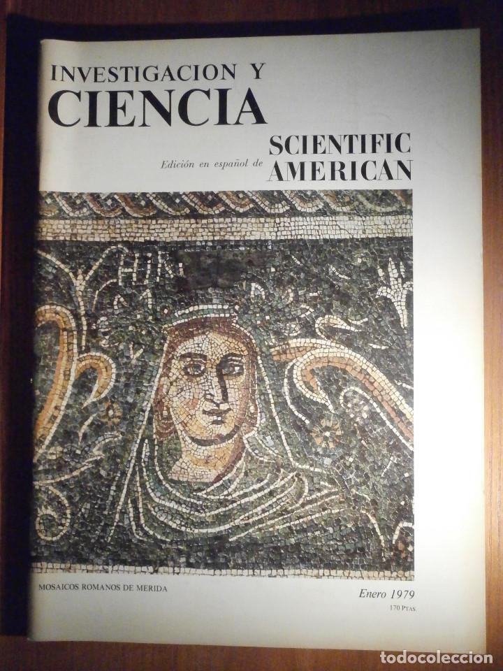 INVESTIGACIÓN Y CIENCIA - SCIENTIFIC AMÉRICAN - MOSAICOS ROMANOS DE MÉRIDA - ENERO 1979 (Coleccionismo - Tauromaquia)