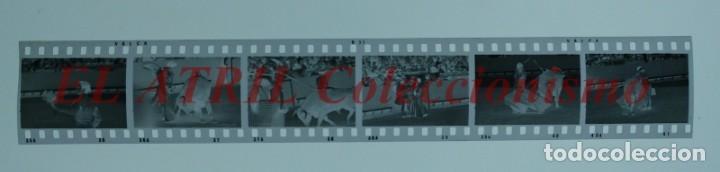 Tauromaquia: VALENCIA TOROS FALLAS AÑO 1965, 33 CLICHES NEGATIVOS DE 35 mm EN CELULOIDE, PUERTA, CAMINO, MACARENO - Foto 6 - 210670572