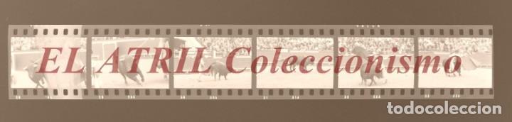 Tauromaquia: VALENCIA TOROS FALLAS AÑO 1965, 33 CLICHES NEGATIVOS DE 35 mm EN CELULOIDE, PUERTA, CAMINO, MACARENO - Foto 15 - 210670572