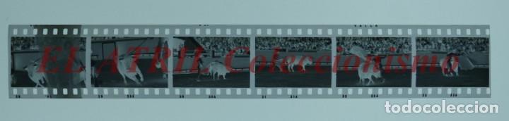 Tauromaquia: VALENCIA TOROS FALLAS AÑO 1965, 33 CLICHES NEGATIVOS DE 35 mm EN CELULOIDE, PUERTA, CAMINO, MACARENO - Foto 16 - 210670572