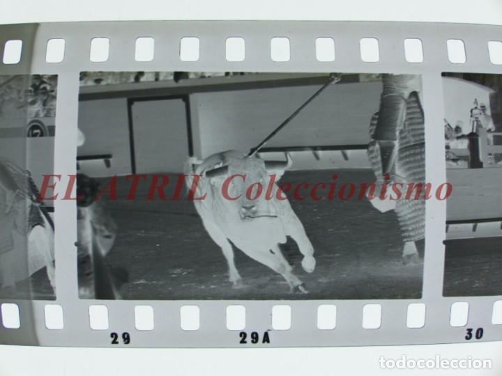 Tauromaquia: VALENCIA TOROS FALLAS AÑO 1965, 33 CLICHES NEGATIVOS DE 35 mm EN CELULOIDE, PUERTA, CAMINO, MACARENO - Foto 20 - 210670572
