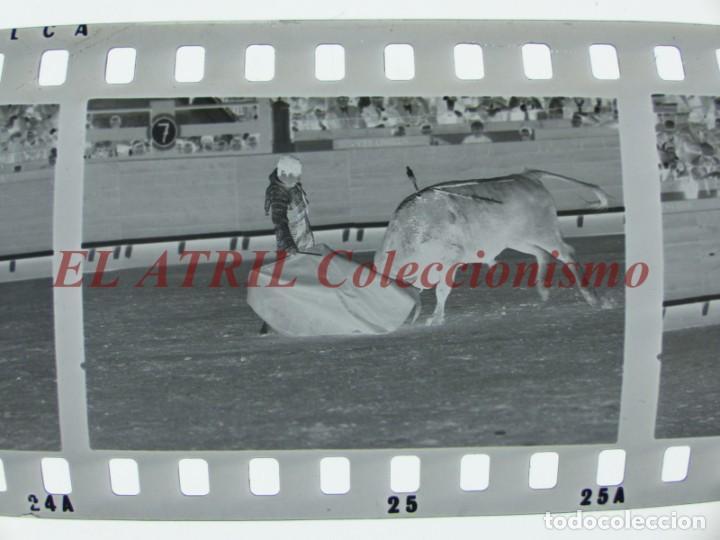 Tauromaquia: VALENCIA TOROS FALLAS AÑO 1965, 33 CLICHES NEGATIVOS DE 35 mm EN CELULOIDE, PUERTA, CAMINO, MACARENO - Foto 52 - 210670572