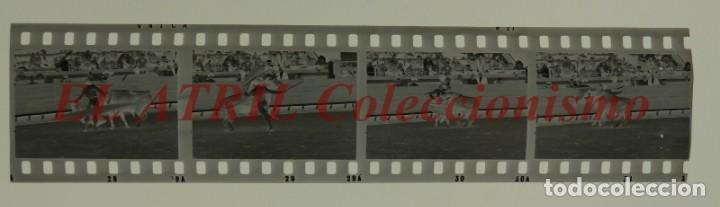 Tauromaquia: VALENCIA TOROS FALLAS AÑO 1965, 33 CLICHES NEGATIVOS DE 35 mm EN CELULOIDE, PUERTA, CAMINO, MACARENO - Foto 58 - 210670572