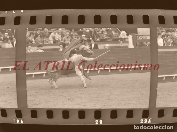 Tauromaquia: VALENCIA TOROS FALLAS AÑO 1965, 33 CLICHES NEGATIVOS DE 35 mm EN CELULOIDE, PUERTA, CAMINO, MACARENO - Foto 61 - 210670572