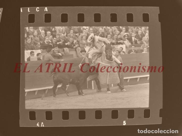Tauromaquia: VALENCIA TOROS FALLAS AÑO 1965, 33 CLICHES NEGATIVOS DE 35 mm EN CELULOIDE, PUERTA, CAMINO, MACARENO - Foto 69 - 210670572