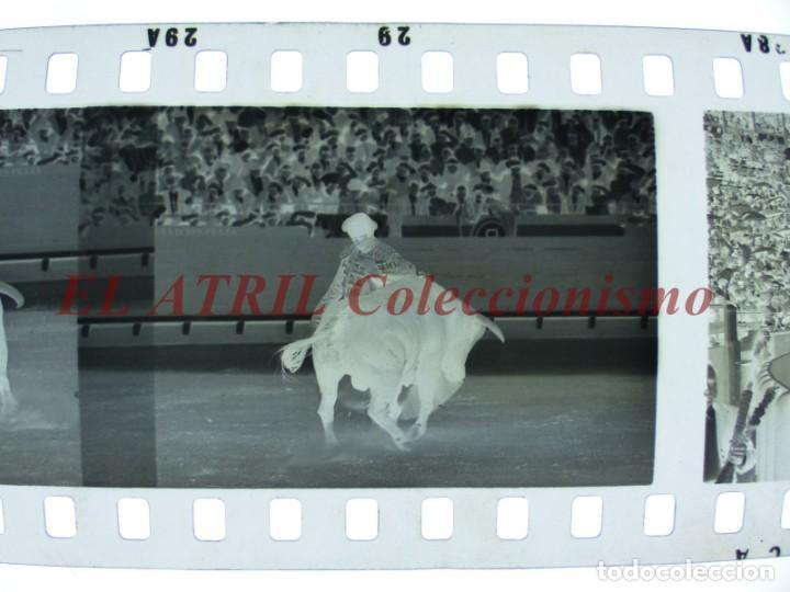 Tauromaquia: VALENCIA TOROS FALLAS AÑO 1965, 33 CLICHES NEGATIVOS DE 35 mm EN CELULOIDE, PUERTA, CAMINO, MACARENO - Foto 74 - 210670572