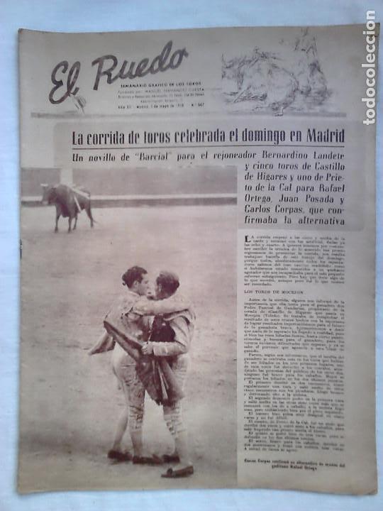 Tauromaquia: Lote 19 números revista taurina El Ruedo / TAUROMAQUIA, TOROS, TOREROS - Foto 3 - 184489435