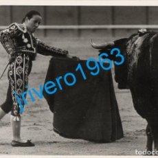 Tauromaquia: SEVILLA, 1981, MARIBEL ATIENZA EN LA REAL MAESTRANZA, 178X126MM. Lote 289533928