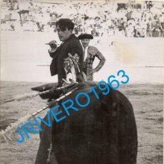 Tauromaquia: ANTIGUA FOTOGRAFIA DEL REJONEADOR GREGORIO MORENO PIDAL, 128X178MM. Lote 289536028
