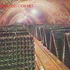 Coleccionismo de vinos y licores: CAVAS CODORNIÚ. BOTELLAS EN PUPITRE. Lote 211893