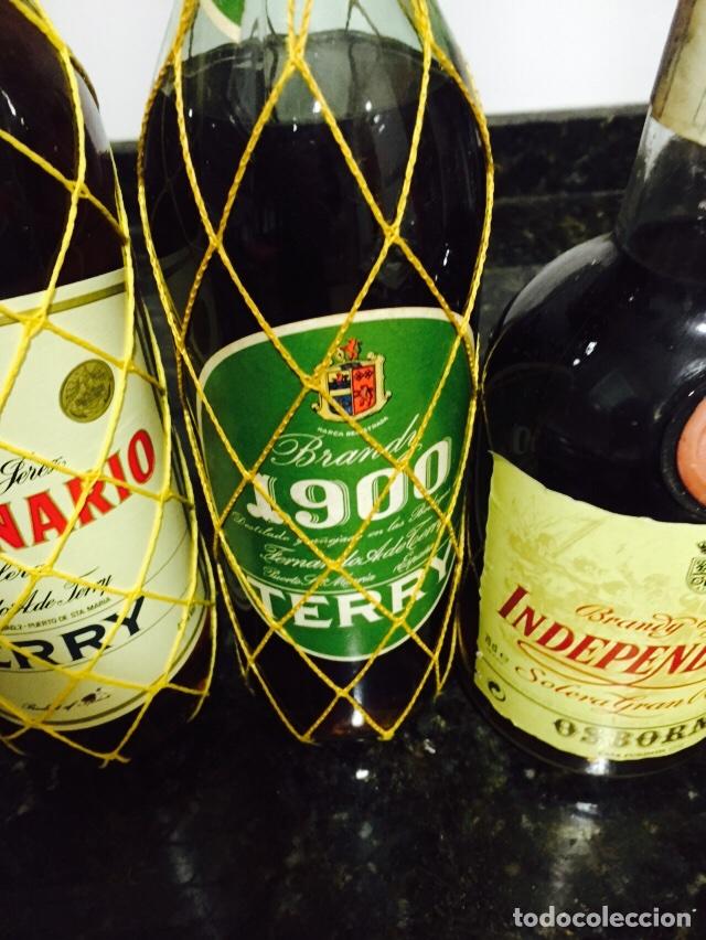 Coleccionismo de vinos y licores: Lote de 3 botellas de brandi - Foto 2 - 80044794