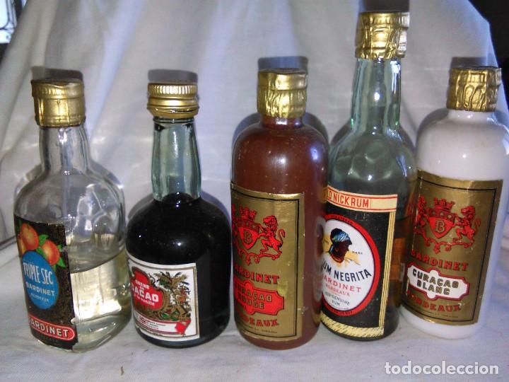 Coleccionismo de vinos y licores: Pack de 15 botellines Destilerías Bardinet Bordeaux. Lote botellin, botellita, botellitas. A3800. - Foto 17 - 85106156