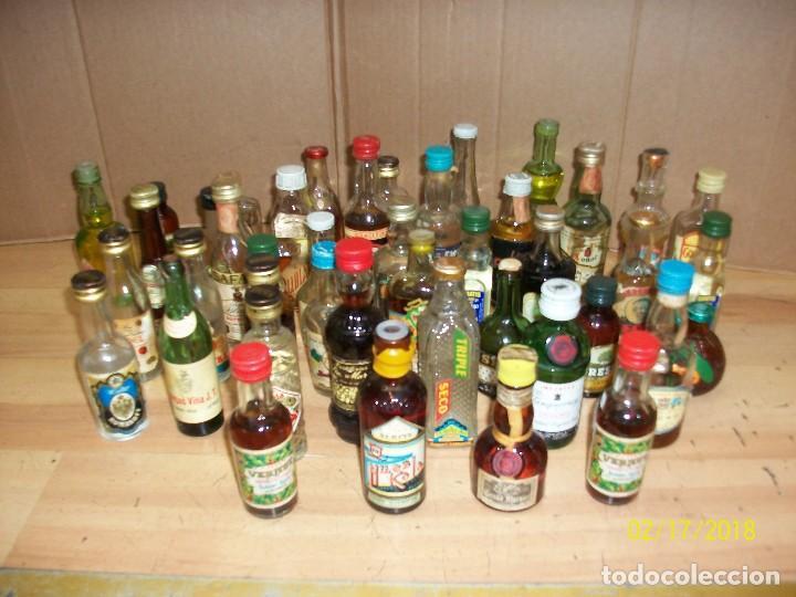 LOTE DE 43 BOTELLINES (Coleccionismo - Botellas y Bebidas - Vinos, Licores y Aguardientes)