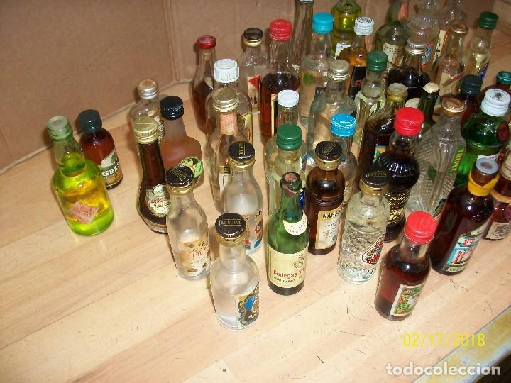 Coleccionismo de vinos y licores: LOTE DE 43 BOTELLINES - Foto 3 - 112735771