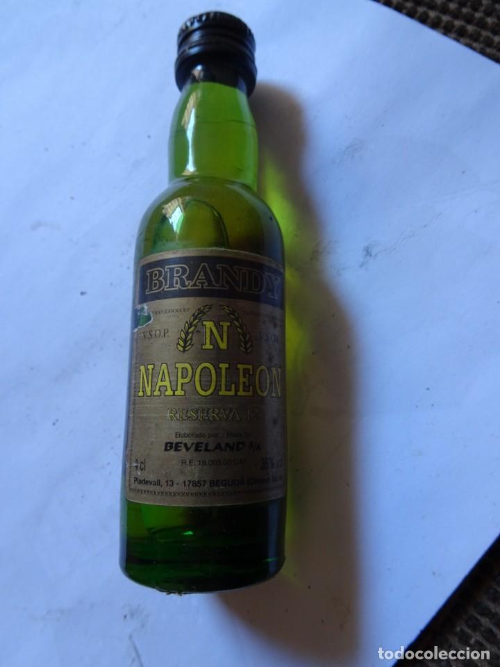 Coleccionismo de vinos y licores: ANTIGUO BOTELLÍN DE BRANDY NAPOLEON, VER FOTOS - Foto 2 - 131998310