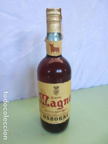 ANTIGUA BOTELLA - BRANDY MAGNO OSBORNE (Coleccionismo - Botellas y Bebidas - Vinos, Licores y Aguardientes)