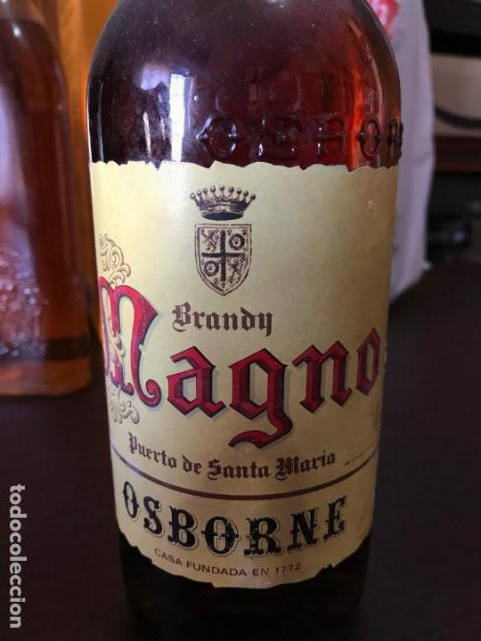 Coleccionismo de vinos y licores: Brandy Magno Osborne 4 pts - Foto 2 - 143977190