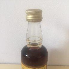 Coleccionismo de vinos y licores: MINI BOTELLA. Lote 176602387