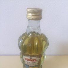 Coleccionismo de vinos y licores: MINI BOTELLA. Lote 176605983