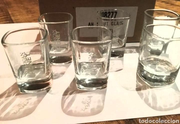 Coleccionismo de vinos y licores: SHOT GLASS - WILD TURKEY AMERICAN HONEY - Foto 3 - 192435285