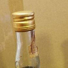 Coleccionismo de vinos y licores: BOTELLA LICOR DE CACAO PAGODA, ANIS REGUERA, PRUNA, SEVILLA, AÑOS 70, MUY RARA. Lote 237045810