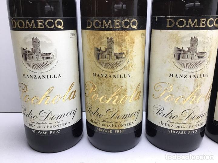 Coleccionismo de vinos y licores: LOTE DE MANZANILLA POCHOLA -DOMECQ - MIRAR FOTOS DE NIVEL - VIÑAS MACHARNUDO - Foto 2 - 276052453