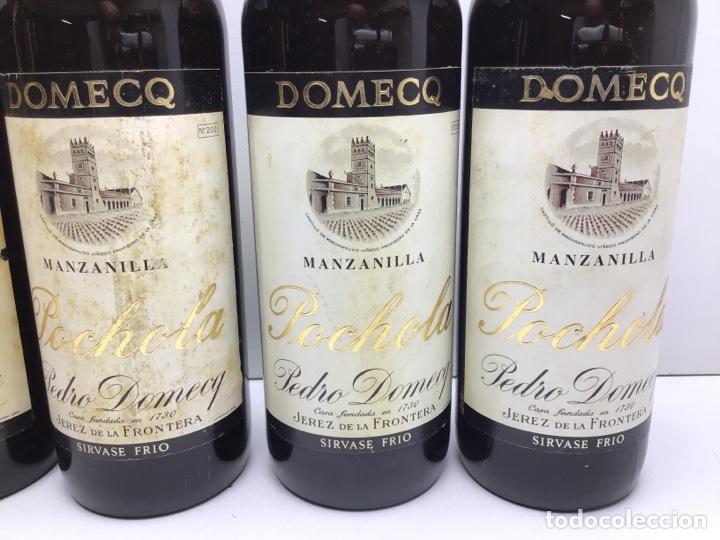 Coleccionismo de vinos y licores: LOTE DE MANZANILLA POCHOLA -DOMECQ - MIRAR FOTOS DE NIVEL - VIÑAS MACHARNUDO - Foto 3 - 276052453