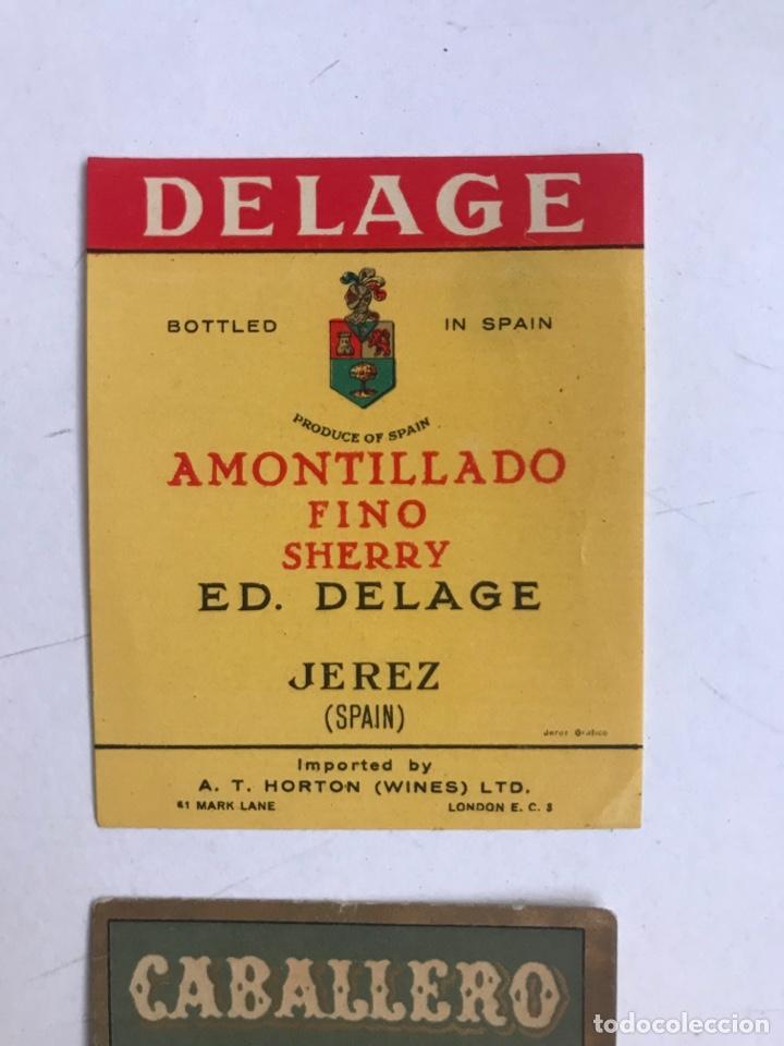 Coleccionismo de vinos y licores: 21 ETIQUETAS DIFERENTES LICOR, BRANDY, JEREZ, VERMUT DE SANLUCAR DE BARRAMEDA Y JEREZ DE LA FRONTERA - Foto 5 - 287837788