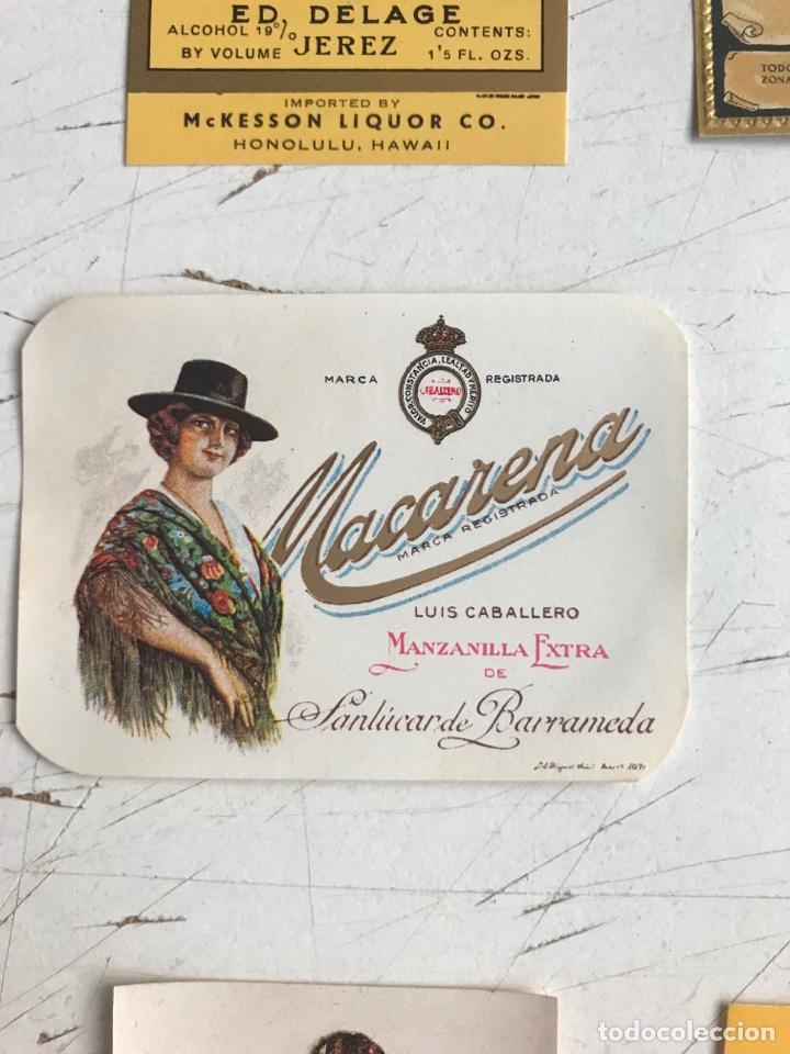 Coleccionismo de vinos y licores: 21 ETIQUETAS DIFERENTES LICOR, BRANDY, JEREZ, VERMUT DE SANLUCAR DE BARRAMEDA Y JEREZ DE LA FRONTERA - Foto 10 - 287837788