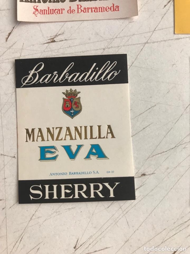 Coleccionismo de vinos y licores: 21 ETIQUETAS DIFERENTES LICOR, BRANDY, JEREZ, VERMUT DE SANLUCAR DE BARRAMEDA Y JEREZ DE LA FRONTERA - Foto 18 - 287837788