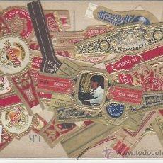 Vitolas de colección: LOTE DE VITOLAS. MAS DE 15 DIFERENTES. POSTALES, LIBROS-MAS COLECCIONISMO EN RASTRILLOPORTOBELLO. Lote 20907542