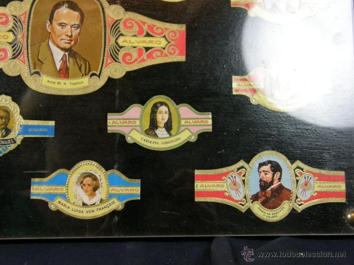 Vitolas de colección: vitolas antiguas alvaro y capote cuadro 30 vitolas enmarcadas Álvaro capote 61 x 31 cm - Foto 3 - 44282305