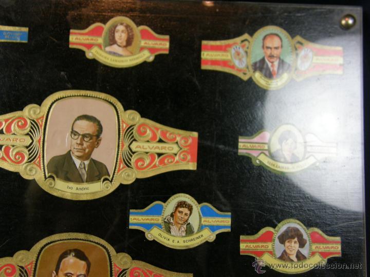 Vitolas de colección: vitolas antiguas alvaro y capote cuadro 30 vitolas enmarcadas Álvaro capote 61 x 31 cm - Foto 7 - 44282305
