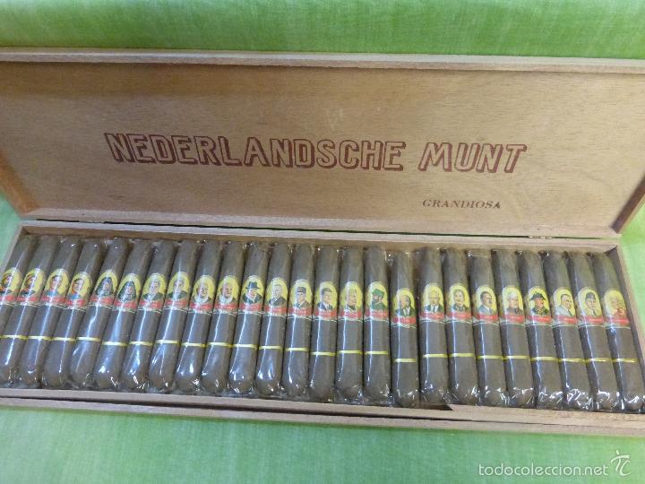 Vitolas de colección: ANTIGUA COLECCIÓN DE 25 PUROS nederlandsche munt grandiosa - PERSONAJES HISTÓRICOS INCLUIDO HITLER - Foto 4 - 56847696