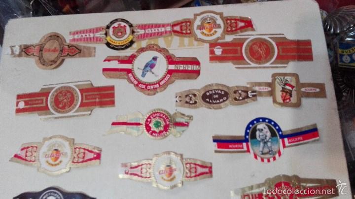 Vitolas de colección: gran lote vitolas varidas habana etc - Foto 2 - 58670599