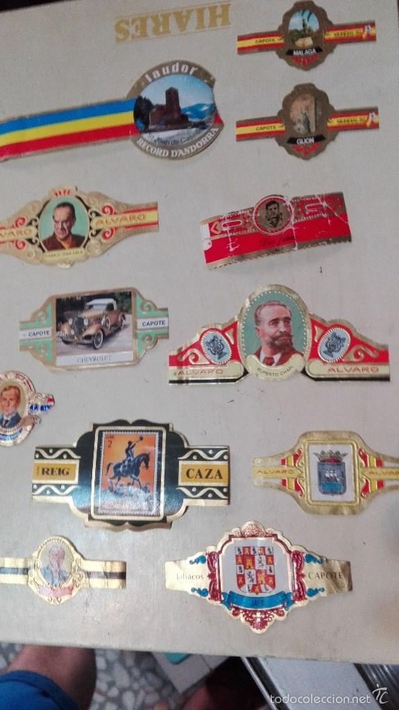 Vitolas de colección: gran lote vitolas varidas habana etc - Foto 5 - 58670599