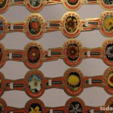 Vitolas de colección: VITOLAS ARATAUPALA - FLORES DE CANARIAS. 24 UNIDADES, SERIE COMPLETA. IMPECABLES. Lote 62548272