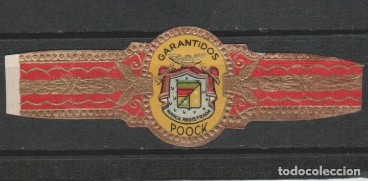 VITOLAS VITOLAS GARANTIDOS ESCUDO (Coleccionismo - Objetos para Fumar - Vitolas)
