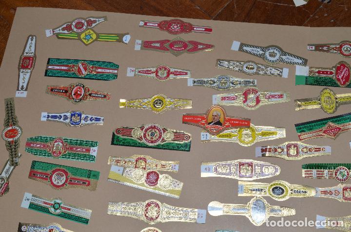 Vitolas de colección: LOTE DE CIEN (100) VITOLAS - Foto 2 - 74072683