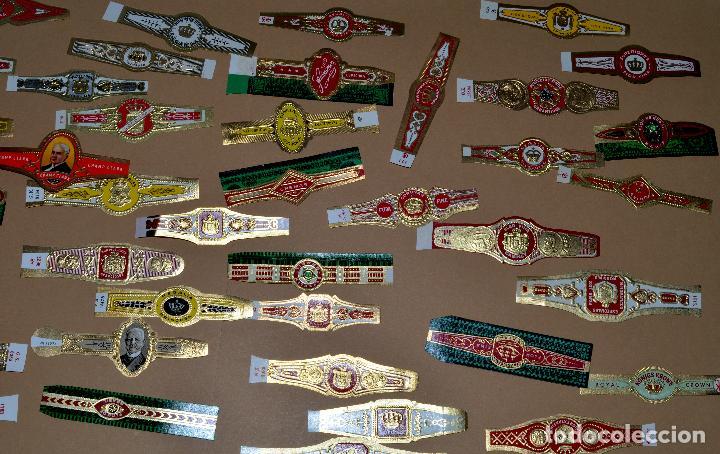 Vitolas de colección: LOTE DE CIEN (100) VITOLAS - Foto 4 - 74072683