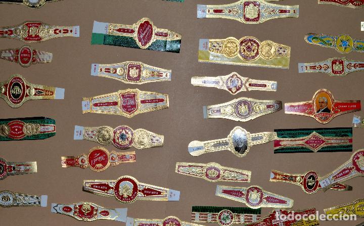 Vitolas de colección: LOTE DE CIEN (100) VITOLAS - Foto 9 - 74072683