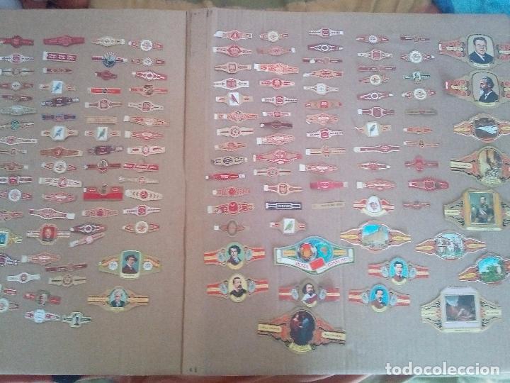 LOTE DE 140 ANTIGUAS VITOLAS (Coleccionismo - Objetos para Fumar - Vitolas)