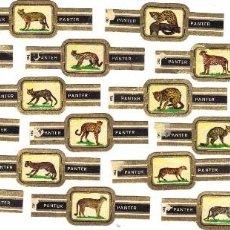 Vitolas de colección: PANTER PANTERAS 24 VITOLAS SERIE COMPLETA. Lote 95282015