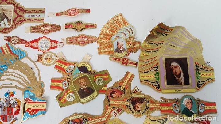Vitolas de colección: COLECCIÓN DE 251 VITOLAS PARA PUROS. VARIAS SÉRIES. CROMOLITOGRAFÍAS. SIGLO XX. - Foto 9 - 111759955