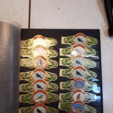 Vitolas de colección: COLECCIÓN VITOLAS CAPOTE, AVES, PÁJAROS. Lote 130433850