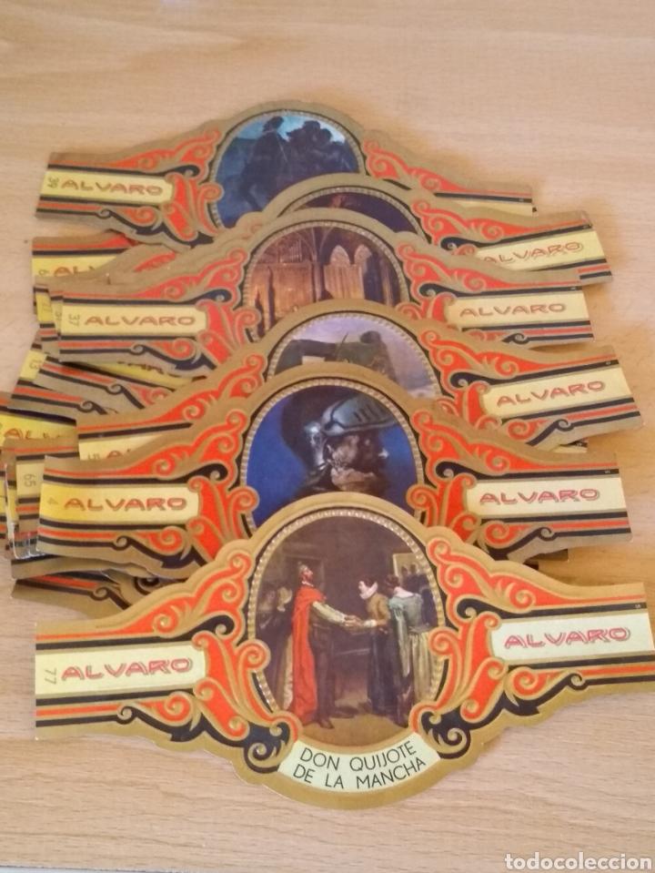 **LOTE DE 20 VITOLAS DE CAJA DE PUROS DE LA COLECCIÓN, -- DON QUIJOTE DE LA MANCHA --(14/7 CM)** (Coleccionismo - Objetos para Fumar - Vitolas)