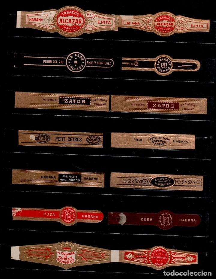 VIT-10 VITOLAS ANTIGUAS CONJUNTO DE 14 EJEMPLARES (Coleccionismo - Objetos para Fumar - Vitolas)